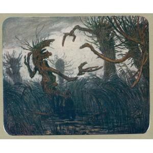 Strašidelné vrby (Letní noc)