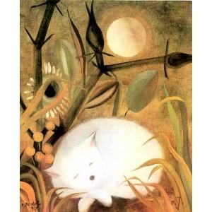 Bílé koťátko (1977)