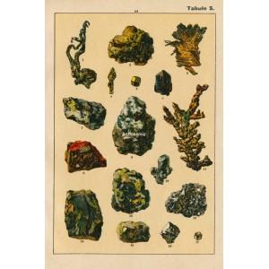 Nerosty a horniny V