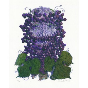 Vinná réva (Víno)