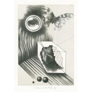 Oko a motýlek (Člověk a příroda)