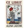 Venkovský kluk (EXL Alena Ladová)