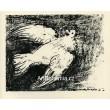 Die Taube im Fluge I, 9.7.1950 (Holubice)
