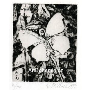 Motýlek se sichrhajckou