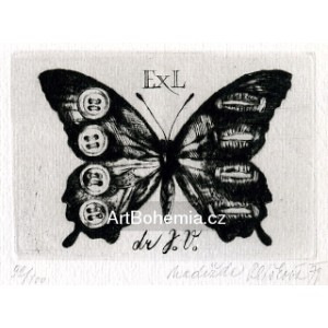 Motýlek s knoflíky