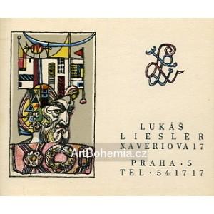 Bojovník - Lukáš Liesler (vizitka)
