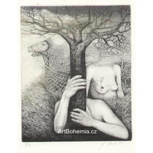 Perseus a Andromeda (z alba AB 50 - vydáno k padesátinám Albína Brunovského)